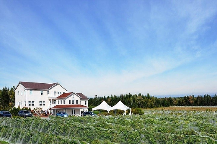 Vignoble Chemin de la Rivière – œnotourisme domaines viticoles des Cantons de l'Est