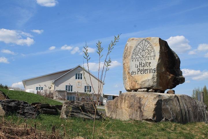 Route des Vignobles ,Visite vignoble ,Vignoble La Halte des Pelerins ,domaines viticoles ,Sherbrooke ,Estrie ,Cantons de l'Est