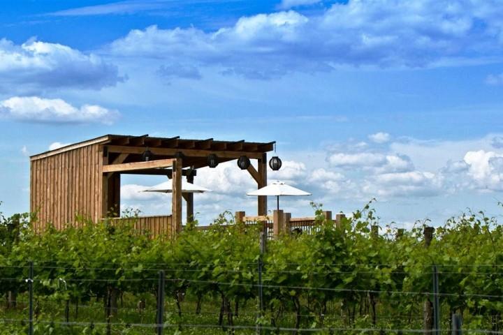 Visite de vignoble de la Bauge Cantons-de-l'Est