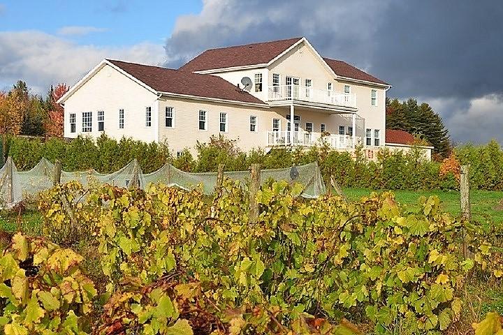 Vignoble Chemin de la Rivière tourisme du vin – zone viticole Magog - Orford Cantons de l'Est