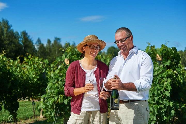 Route des Vignobles ,Visite vignoble ,Vignoble Domaine Bergeville ,Vignobles ,Cantons de l'Est