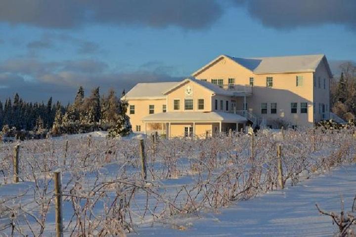 Visite Vignoble ,Vignoble Chemin de la Riviere ,domaines viticoles ,Cantons de l'Est ,Vignobles Magog ,Meilleurs restaurants ,hebergement ,a proximite