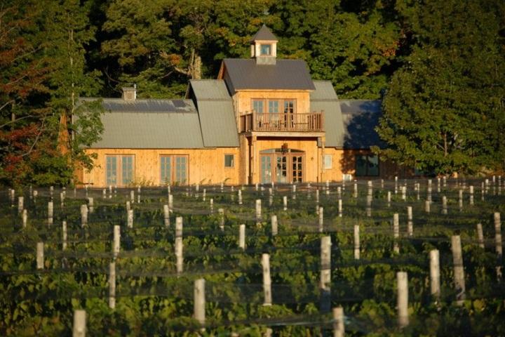 Route des Vignobles ,Visite vignoble ,Vignoble Domaine Les Brome ,Vignoble ,domaines viticoles ,Cantons de l'Est