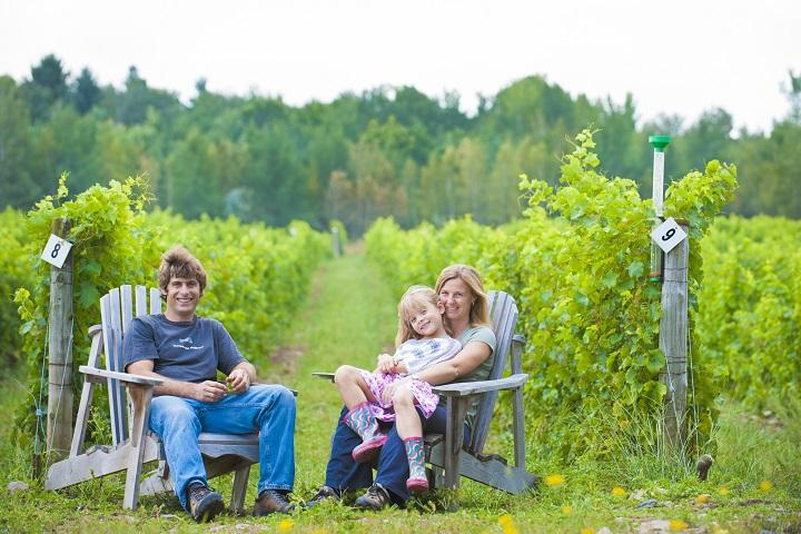 Route des Vignobles ,Visite vignoble ,Vignoble Les Pervenches ,domaines viticoles ,Farnham ,Estrie ,Cantons de l'Est