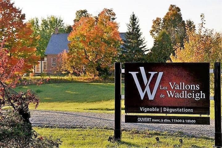 Vignoble Les Vallons de Wadleigh tourisme du vin – zone viticole Sherbrooke - Compton Cantons de l'Est