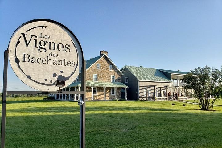 Vignoble Les Bacchantes ,oenotourisme ,visite de vignobles ,cépages ,dégustation ,Montérégie, Sélection Vindici ,Sud du Québec ,