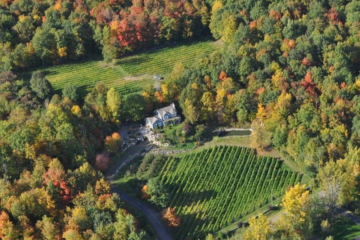 Vignoble Murmures ,oenotourisme ,visite de vignobles ,cépages ,dégustation ,Montérégie, Sélection Vindici ,Sud du Québec ,