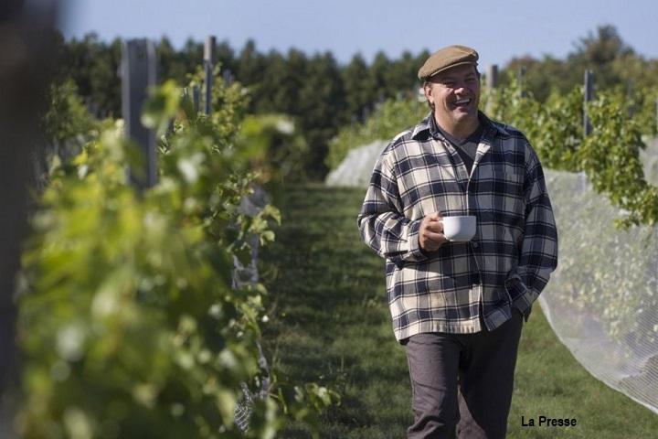 Vignoble Pelchat Lemaitre-Auger ,oenotourisme ,visite de vignobles ,cépages ,dégustation ,Montérégie, Sélection Vindici ,Sud du Québec ,
