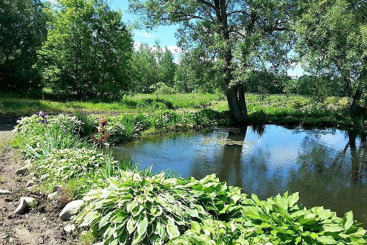 Vignoble Centaure ,oenotourisme ,visite de vignobles ,cépages ,dégustation ,Cantons de l'Est ,Estrie ,Sélection Vindici ,Sud du Québec ,