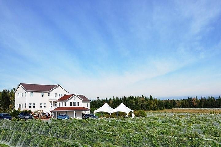 Vignoble Chemin de la Rivière ,oenotourisme ,visite de vignobles ,cépages ,dégustation ,Cantons de l'Est ,Estrie ,Sélection Vindici ,Sud du Québec ,