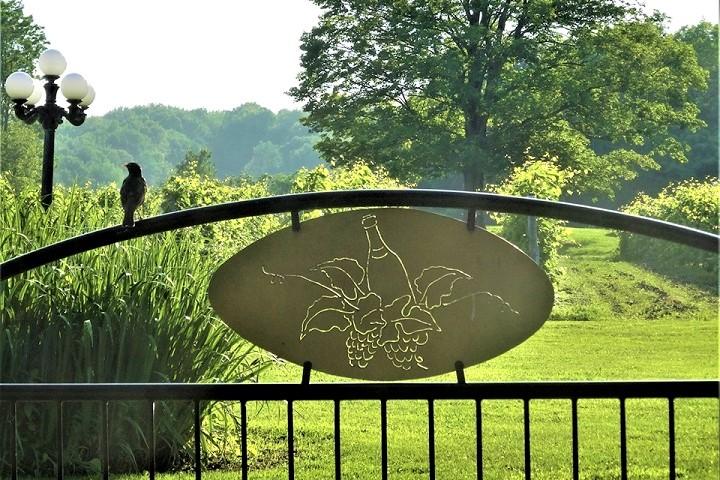 Vignoble Clos Ste-Croix ,oenotourisme ,visite de vignobles ,cépages ,dégustation ,Cantons de l'Est, Estrie ,Sélection Vindici ,Sud du Québec ,.
