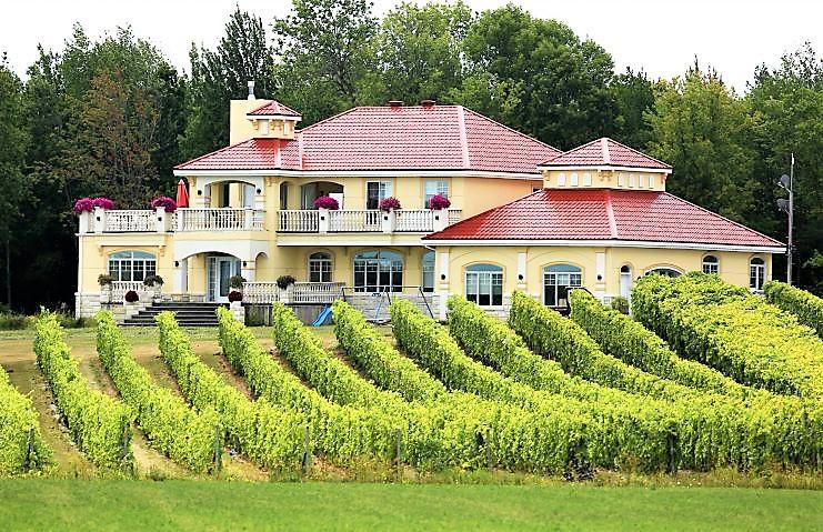 Vignoble Cortellino ,oenotourisme ,visite de vignobles ,cépages ,dégustation ,Montérégie, Sélection Vindici ,Sud du Québec ,