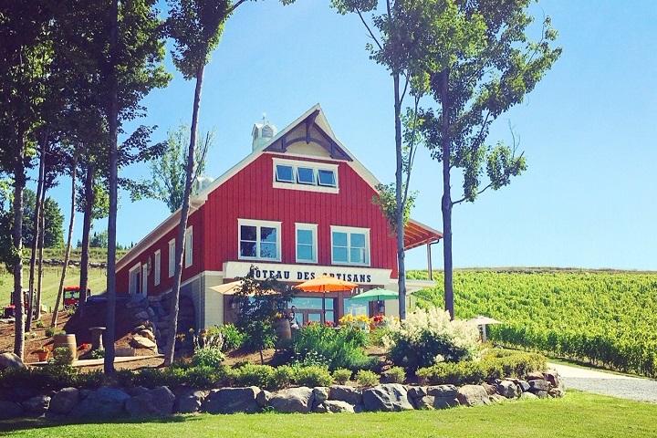 Vignoble Coteau des Artisans ,oenotourisme ,visite de vignobles ,cépages ,dégustation ,Montérégie, Sélection Vindici ,Sud du Québec ,