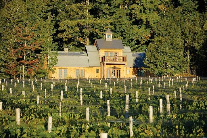 Vignoble ,Léon Courville vigneron ,Domaine Les Brome ,oenotourisme ,visite de vignobles ,cépages ,dégustation ,Cantons de l'Est ,Estrie , Sélection Vindici ,Sud du Québec ,