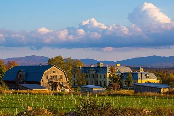 Vignoble La Belle Alliance ,oenotourisme ,visite de vignobles ,cépages ,dégustation ,Cantons de l'Est, Estrie ,Sélection Vindici ,Sud du Québec ,