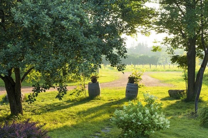 Vignoble Négondos ,oenotourisme ,visite de vignobles ,cépages ,dégustation ,Basses-Laurentides , Sélection Vindici ,Sud du Québec ,