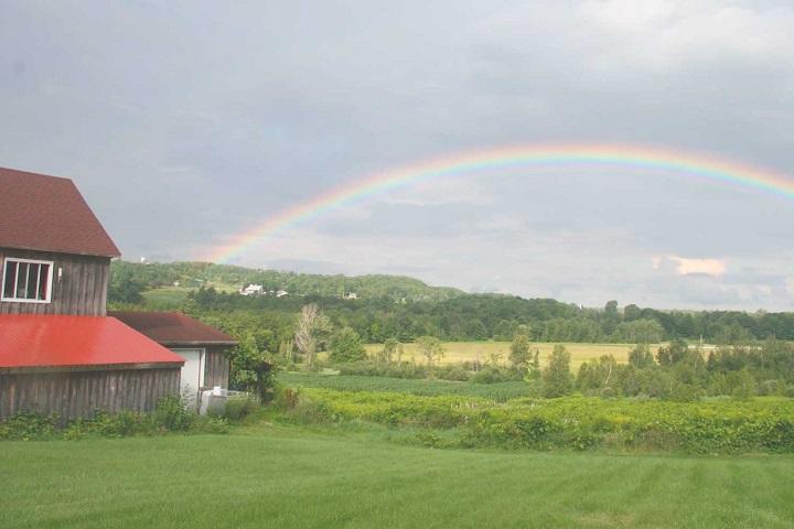 Vignoble Trois Clochers ,oenotourisme ,visite de vignobles ,cépages ,dégustation ,Cantons de l'Est, Estrie ,Sélection Vindici ,Sud du Québec ,