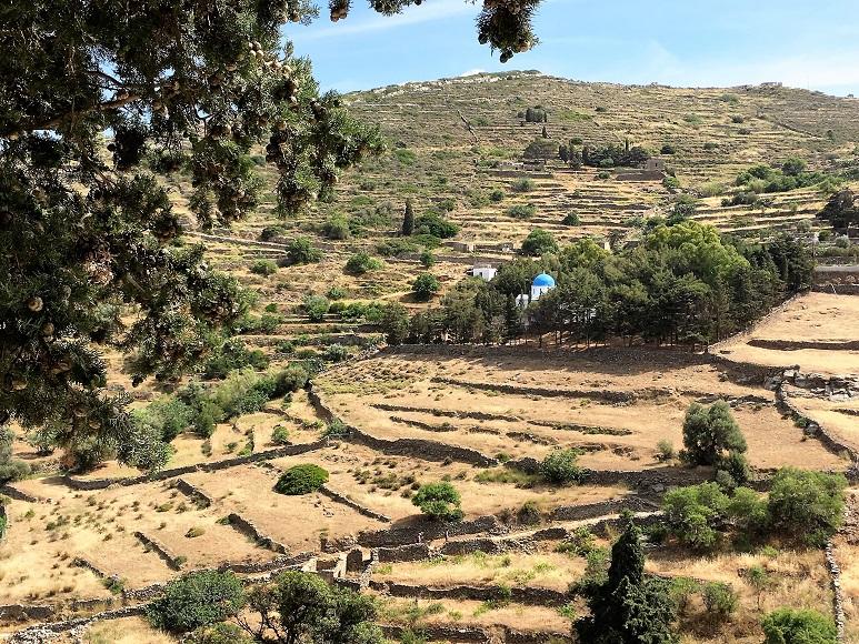 Paros Naxos Grèce Oenotourisme VINDICI