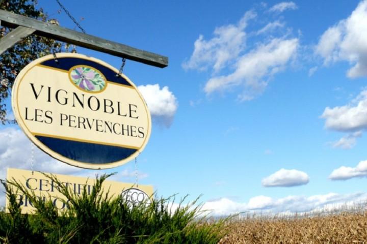 Vignoble Les Pervenches tourisme du vin – zone viticole Brigham - Farnham Cantons de l'Est