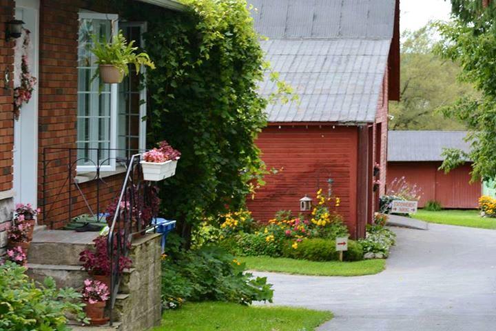Centaure ,Visite Vignoble ,Vignoble Centaure ,domaines viticoles ,Cantons de l'Est ,Vignobles Dunham ,Meilleurs restaurants ,hebergement