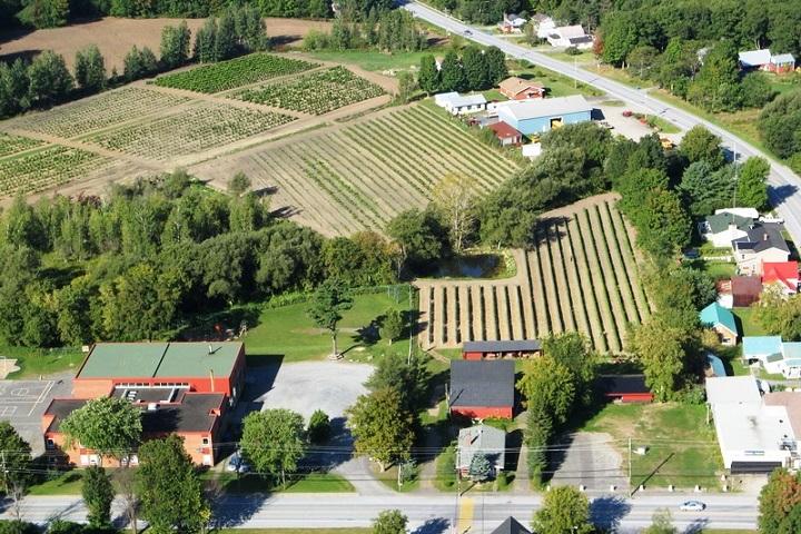Visite Vignoble ,Vignoble Centaure ,domaines viticoles ,Cantons de l'Est ,Vignobles Dunham ,Meilleurs restaurants ,hebergement