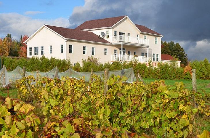 Route des Vignobles ,Visite Vignoble ,Vignoble Chemin de la Riviere ,domaines viticoles ,Estrie ,Cantons de l'Est ,Vignobles Magog ,Meilleurs restaurants ,hebergement ,a proximite