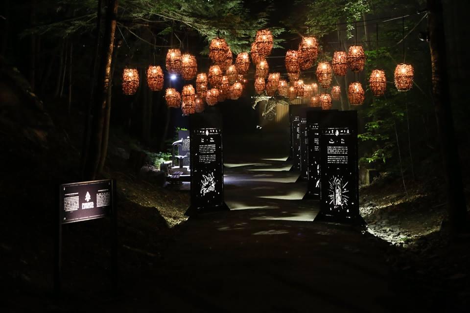 Foresta Lumina Sélection VINDICI oenotourisme Sud du Québec