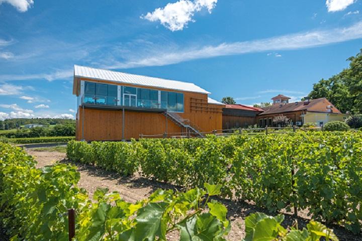 Vignoble de l'Orpailleur – œnotourisme domaines viticoles des Cantons de l'Est