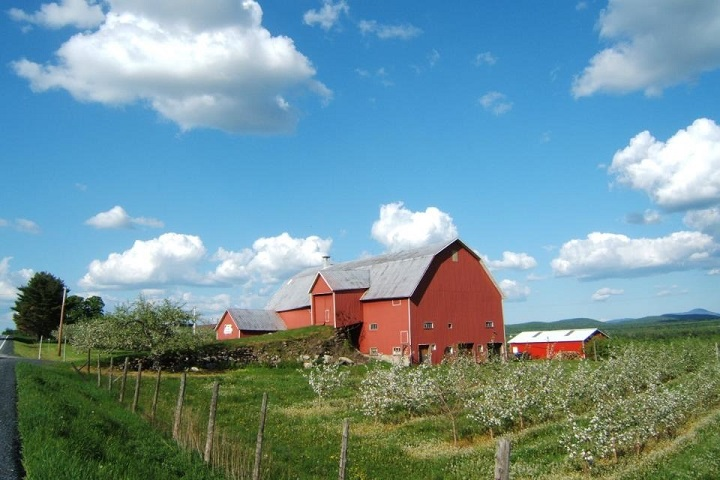 Vignoble Val Caudalies – œnotourisme domaines viticoles des Cantons de l'Est