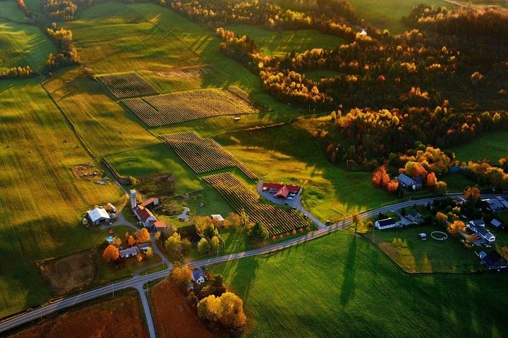 Vignoble Vallons de Wadleigh ,route des vignobles ,Sud du Québec ,cantons de l'est ,oenotourisme ,tourisme du vin ,sélection vindici