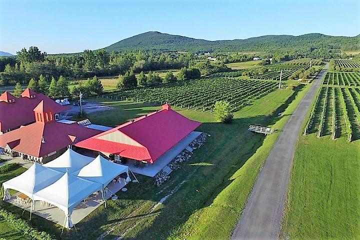 Vignoble de Lavoie ,oenotourisme ,visite de vignobles ,cépages ,dégustation ,Montérégie, Sélection Vindici ,Sud du Québec ,