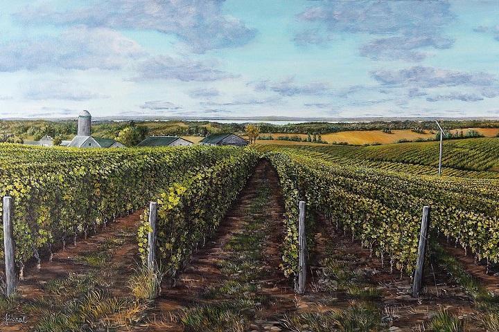 Vignoble La Cantina ,Oka , Basses Laurentides ,Sud du Québec ,VINDICI