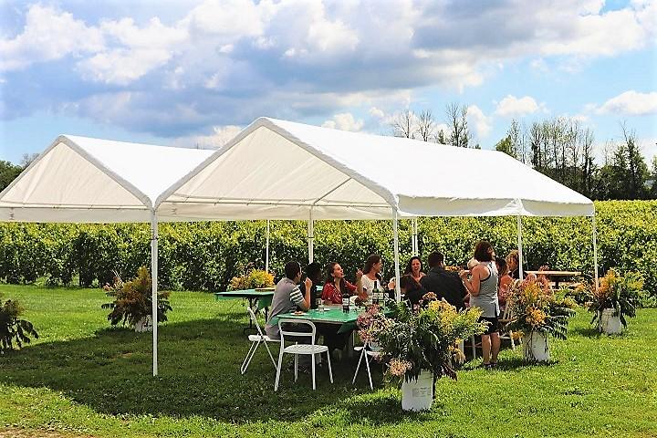 Vignoble d'Ovila ,oenotourisme ,visite de vignobles ,cépages ,dégustation ,Montérégie, Sélection Vindici ,Sud du Québec ,